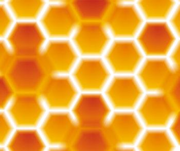gelée-royale-nectare-stimulant-fortifiant