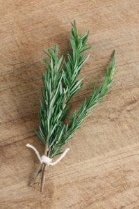 romarin-age-centenaire-herbe-aromatique