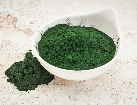 spiruline algue