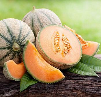 La SOD de Melon : un antioxydant de première ligne.