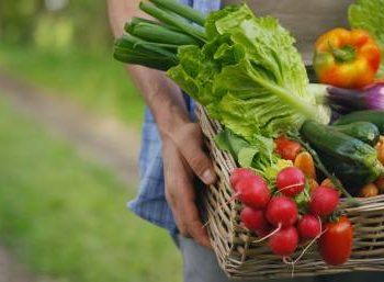 fruits_légumes_alzheimer